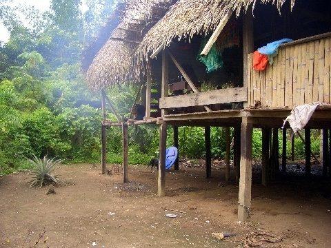 A house deep in Ecuador's jungle