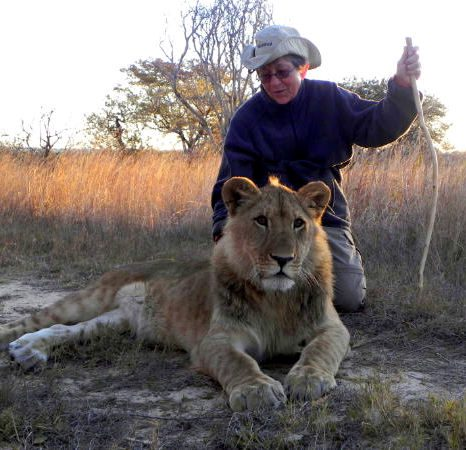 Peggy and a baby lion in Antelope Park in Zimbabwe.