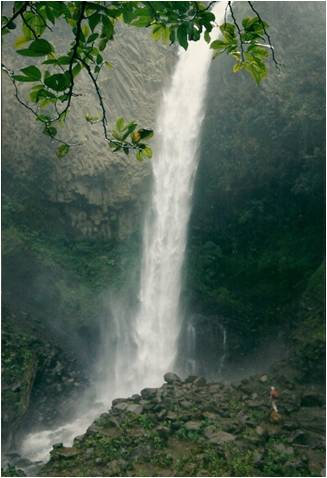 A beautiful waterfall Maureen photographed in Ecuador.
