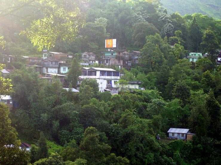 The school in India (the blue and white building tucked away in the trees) where Abigail volunteered.