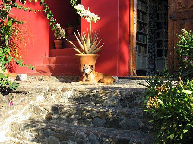 Bonnie's beautiful rental house in Oaxaca, Mexico.