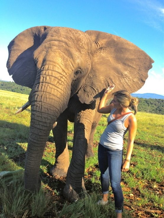 Spending time at the Elephant Sanctuary in Knysna.