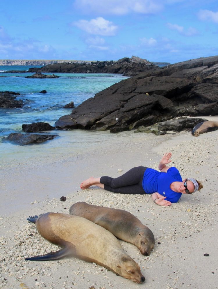 Free travel is possible if you're a teacher! Check out this huge list of opportunities to see the world through grants, scholarships, and programs. Pictured: Fun with seals on a beach.
