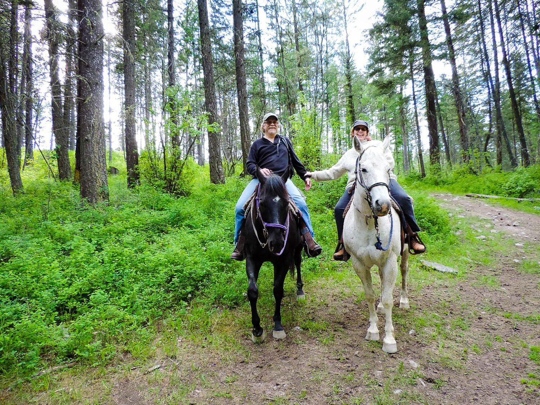 A horseback ride through the woods in Montana.