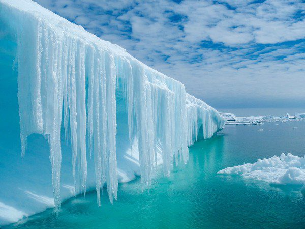 Dripping icicles in an iceberg of Antarctica.