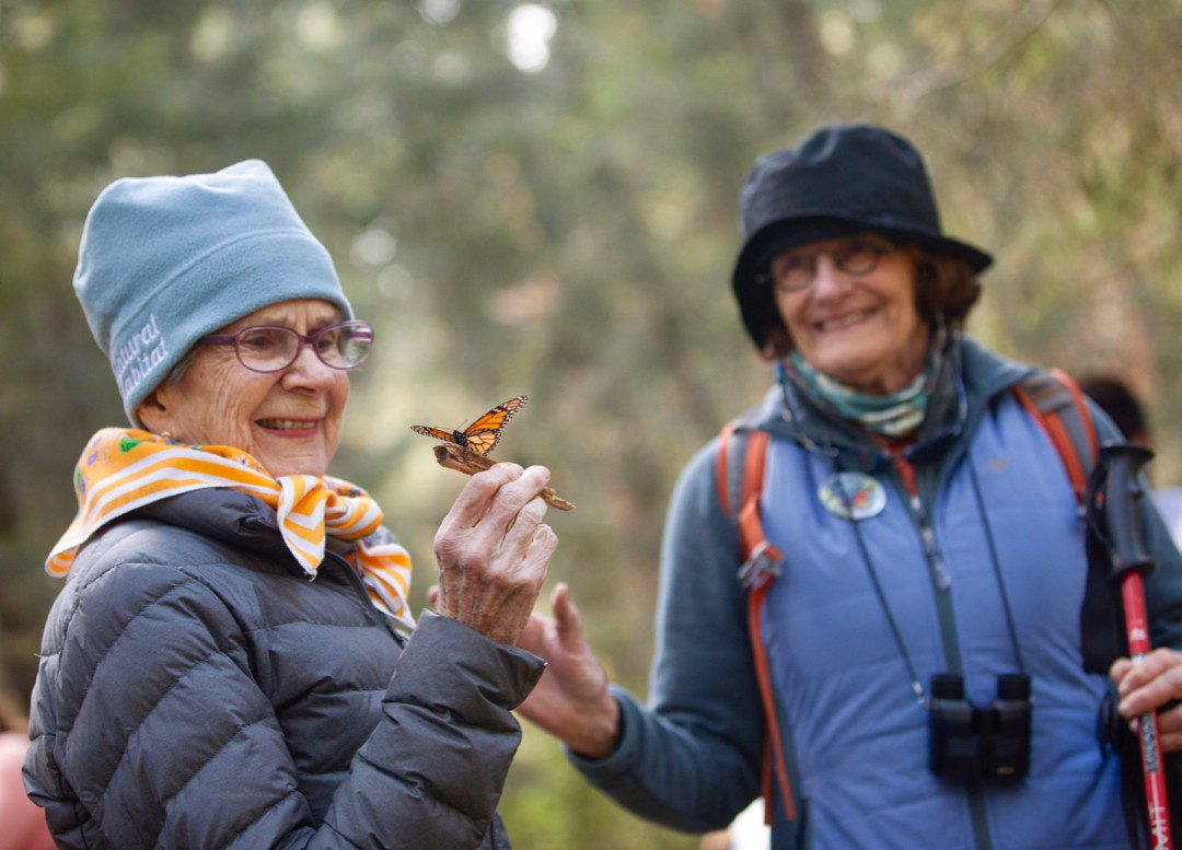 Cavorting with monarch butterflies!