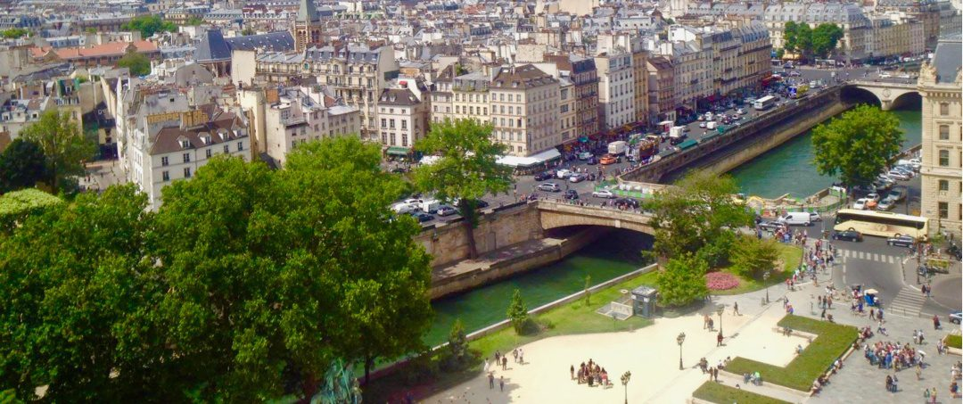 A view of Paris from Notre Dame Cathedral.