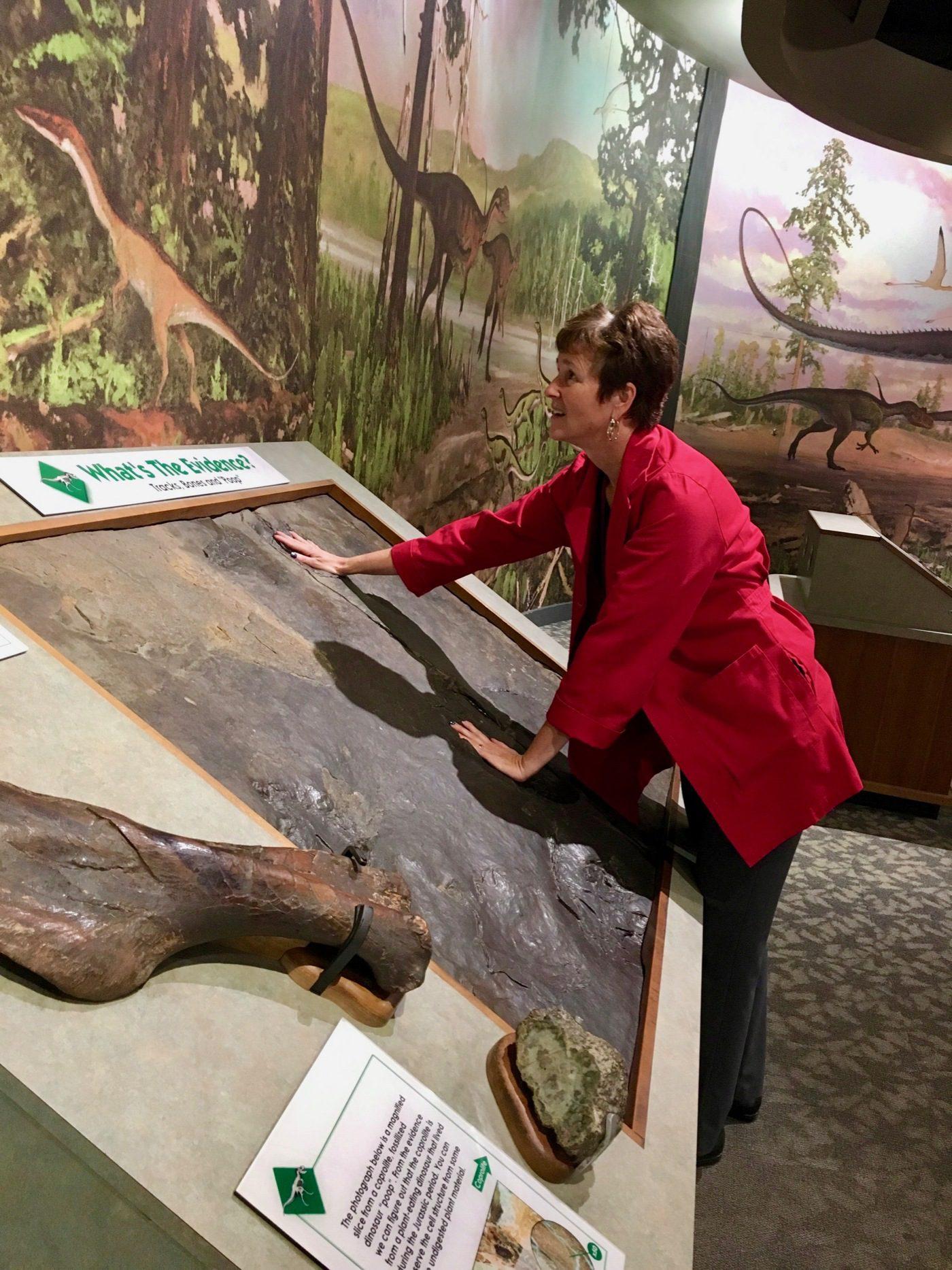 Museum jobs: Boston dinosaur science
