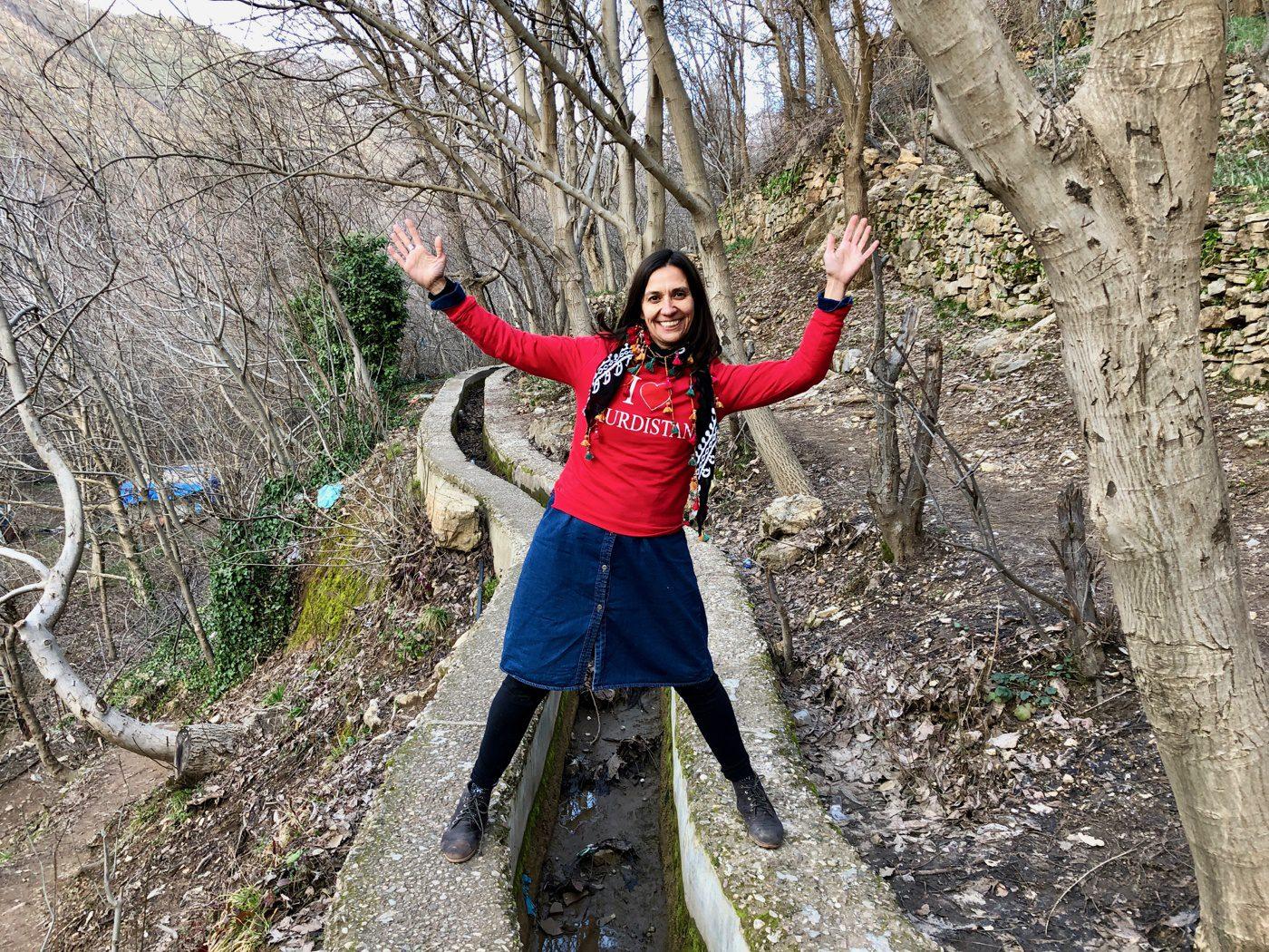 Mental health abroad: Iraq and Iran