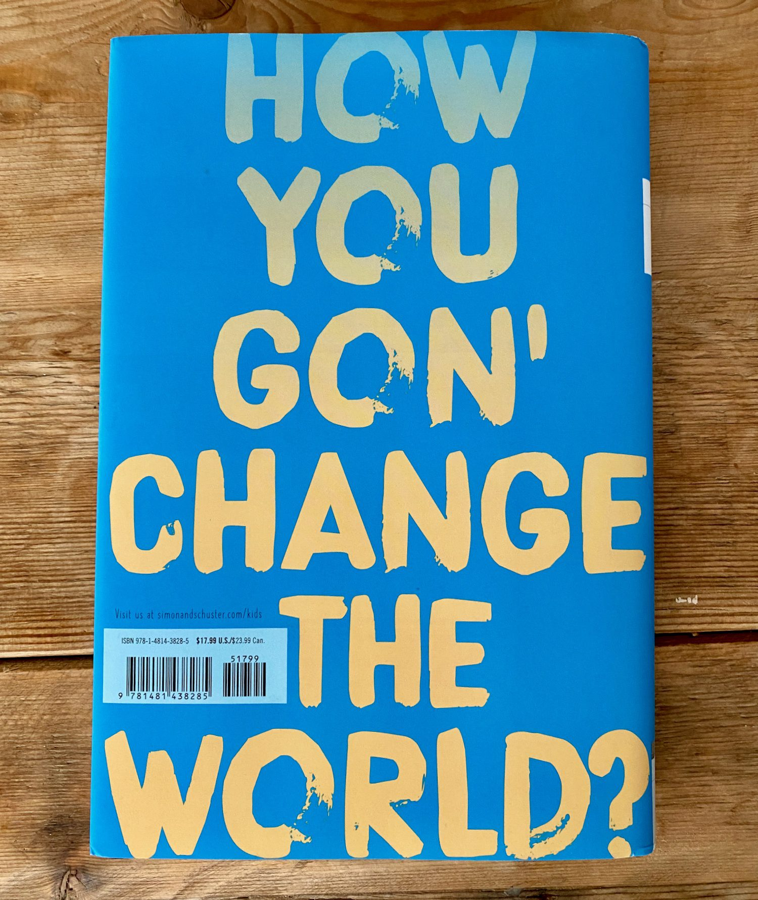 """The back cover of Look Both Ways: """"How you gon' change the world?"""""""